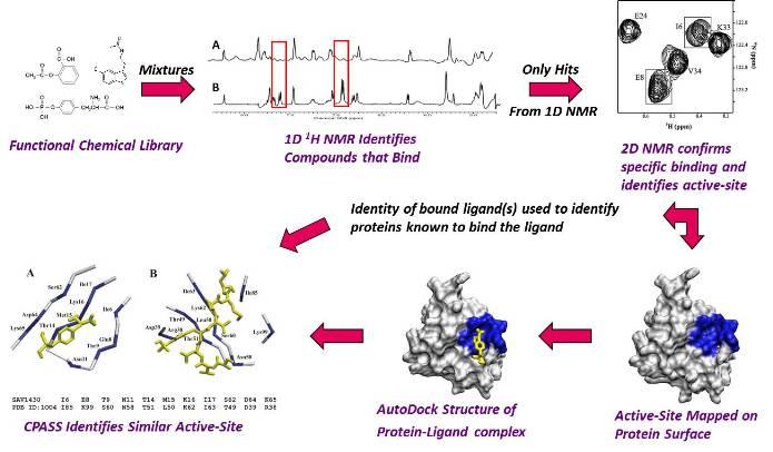 Fast NMR