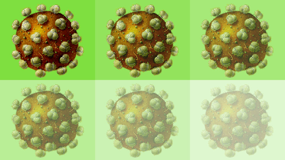New approach improves potential HIV vaccine