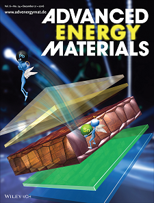 Zeng Advanced Energy Materials Cover