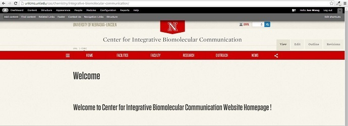 Website Design with UNLcms