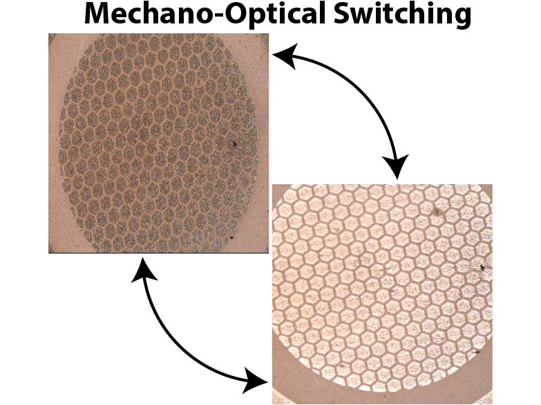 Soft Surfaces for the Reversible Control of Thin-Film Microstructure and Optical Reflectance