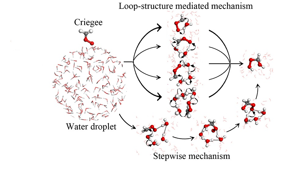 New Mechanistic Pathways for Criegee–Water Chemistry at the Air/Water Interface